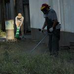 雑草を刈る様子の写真